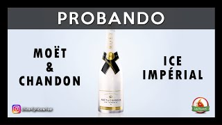 🍾 Champagne MOËT & CHANDON ICE IMPÉRIAL (Degustación)