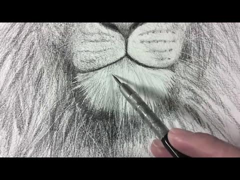 Cómo dibujar un León