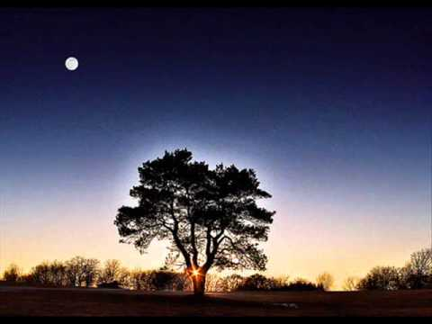 ottmar liebert - bombay (night of dream)