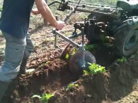 Butoir pomme de terre a disque