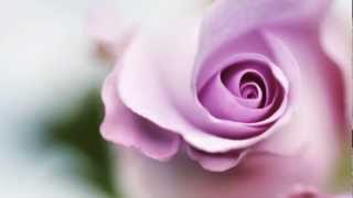 Top 10 Piano Songs Best Relaxing Solo Piano Music For Candlelight Dinner Romantic Songs VideoMp4Mp3.Com