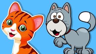 Kediler Hep Miyav Der - 5 Çocuk Şarkısı Bir Arada