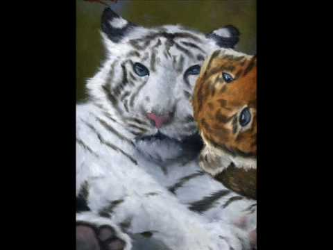 Tigers Cubs and More Tigers