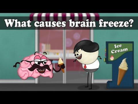 why we get a brain freeze essay