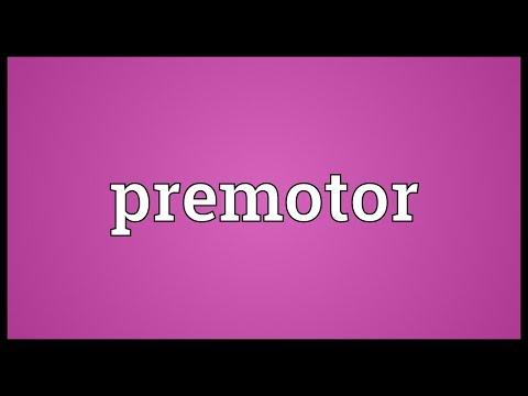 Header of Premotor