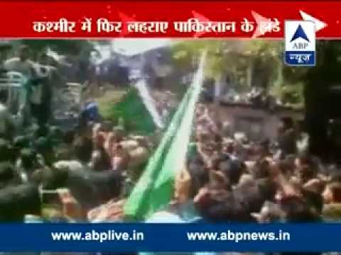 Pakistani flags waved at Geelani rally in J-K