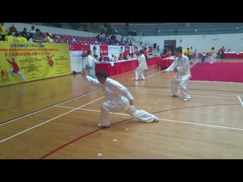 global finance group the 7th Singapore international martial arts tournament 2016 陈氏太极拳老架二路