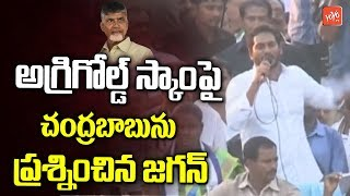 YS Jagan Questions to Chandarababu Over Agrigold Scam and Victims | YSRCP Praja Sankalpa Yatra |YOYOTV