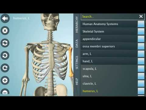 Anatomy 3D Pro - Anatronica screenshot for Android
