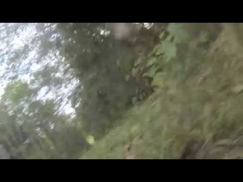 Bear Selfie - the missing footage