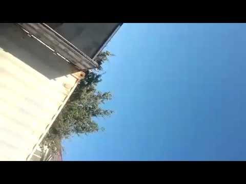 Спор между соседями