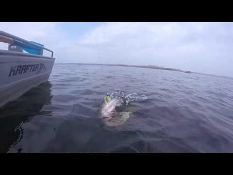самара рыбная ловля  сверху васильевских островах