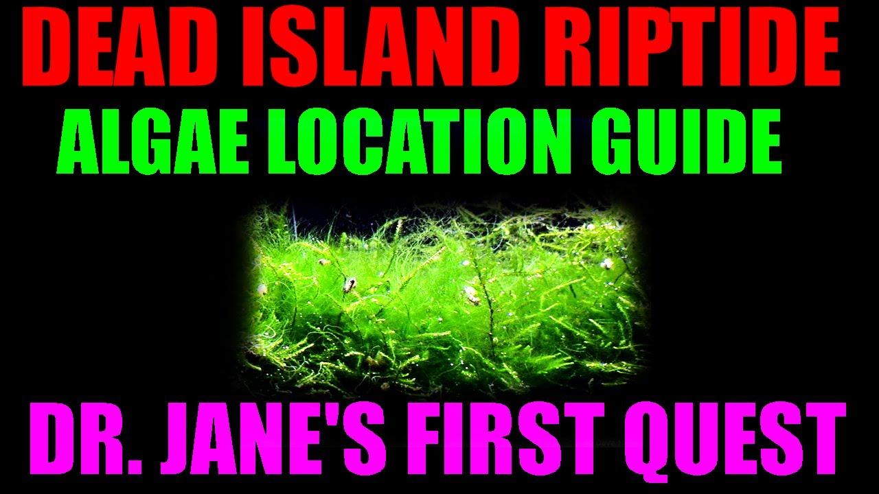 Bleach Dead Island Dead Island Riptide Best