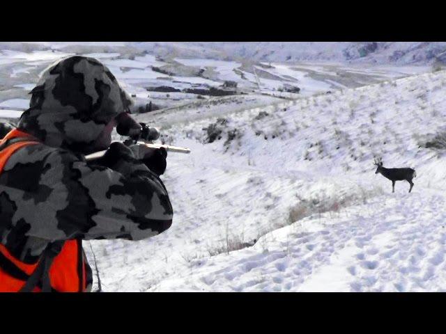 Deer Hunting 2014