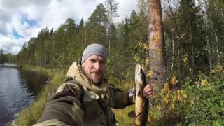 путешествия рыбалка по тайге видео