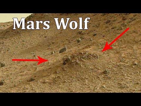 Mars | Water on Mars | Life on Mars