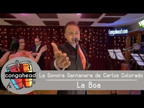 La Sonora Santanera de Carlos Colorado performs La Boa