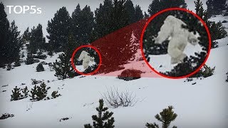 5 Nightmarish Facts About Yetis & The Abominable Snowman...