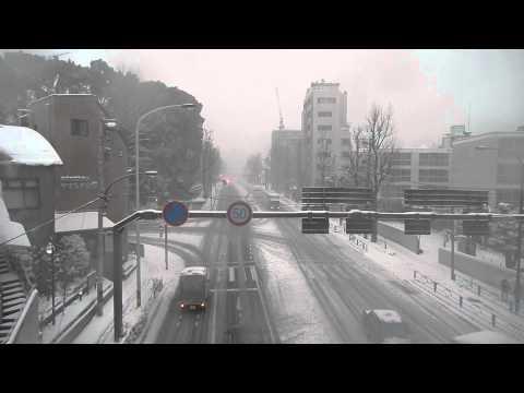 Heavy snow in tokyo 2 2014