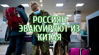 ???? Началась эвакуация россиян из зараженного коронавирусом Китая