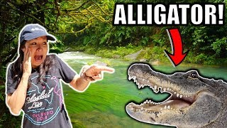 Remote Controlled ALLIGATOR PRANK on Mom!