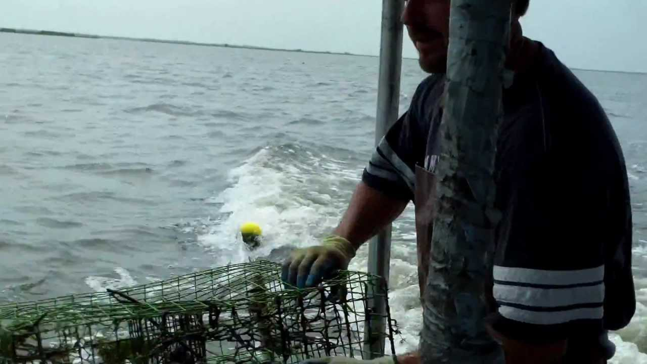Blue crab fishing cajun style in south louisiana part 6 for Blue crab fishing
