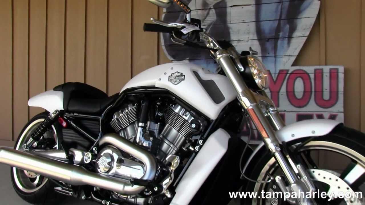 Harley Davidson V Rod Muscle For Sale