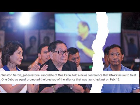 Binay on UNA-One Cebu split: There are gains, losses