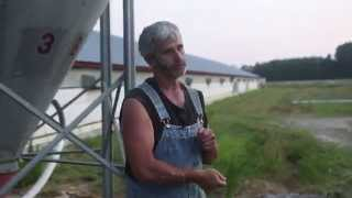 Perdue Chicken LIES (Factory Farmer speaks out) Farmers Market Tyson Chickfila KFC PETA Recipes