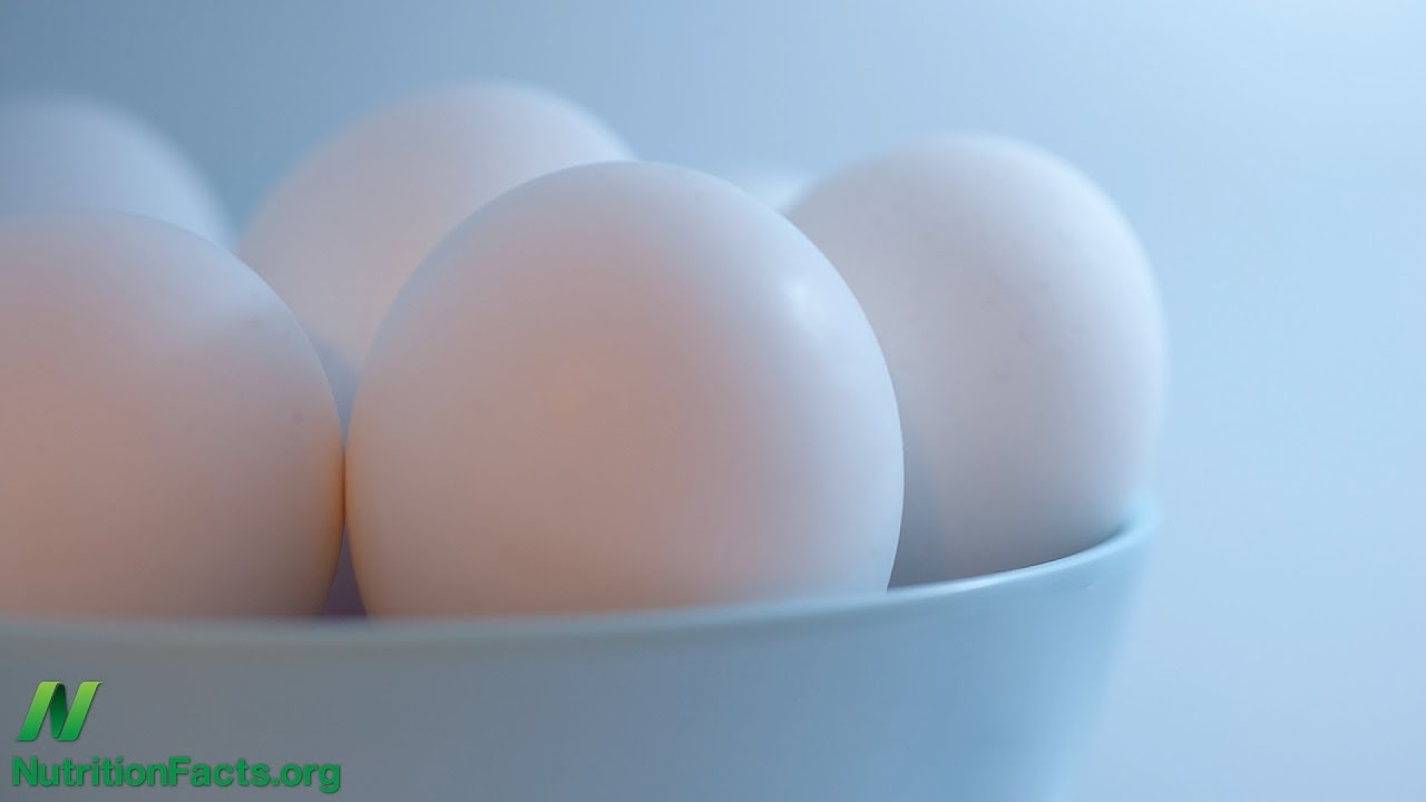 Carcinogenic Retrovirus Found in Eggs