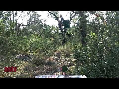 ArrowSling'nTV-  HOYT DORADO shooting from 2 x 4 homemade TREE STAND