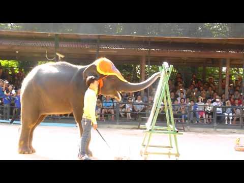 Таиланд. Парк Нонг Нуч. Слоны-художники.