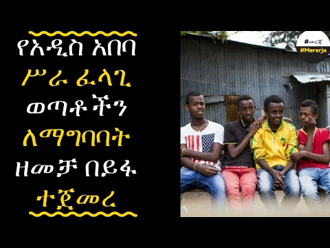 Ethiopia: Government campaign to peruse Youth unemployed in Addis Ababa
