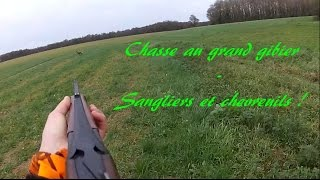 Alexis Chasse - Chasse au grand gibier