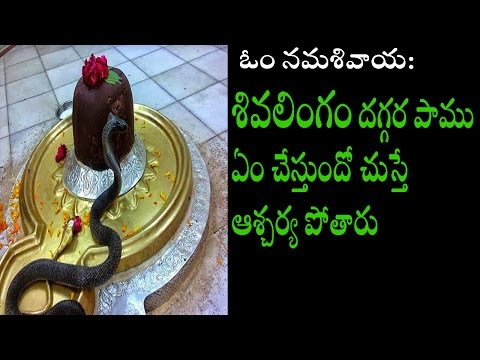 Most Mysterious Shiva Temple In India/shiva Lingam Mystery/ Mystery Shiva Temple