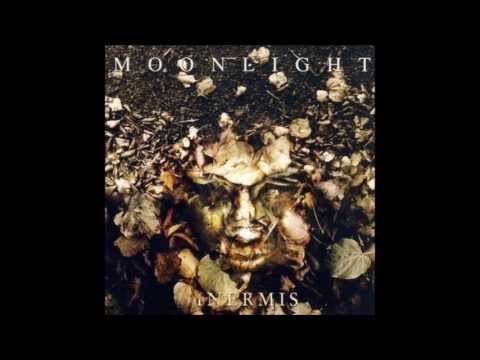 Moonlight - Noc
