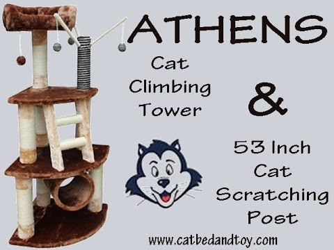 Athens Cat Climbing Tower and 53 Inch Cat Scratching Post