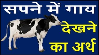 Download सपने में दिखे गाय तो बदलने वाला है आपका भाग्य Cow Dream Meaning interpretation swapna phal 3Gp Mp4