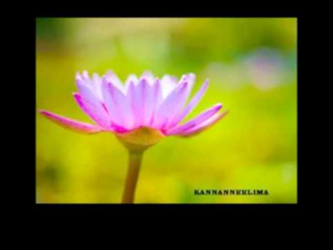 Alliyambal Poove Yeshudas Kannanneelima    Sameer- Youtube.flv video