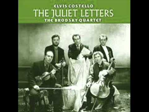 Elvis Costello - Expert Rites