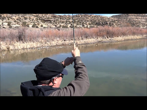 San Juan River wade spring fly fishing 2013 nymph dry fly HD Sony HX30V Canon 650d/ t4i
