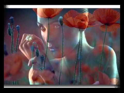la vie en rose.wmv