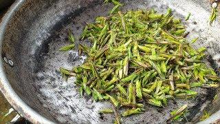 Bữa cơm đặc sản Côn Trùng tại nhà dân ỏ Mường Lò phần 1. Nguyễn Tất Thắng