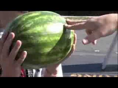 The Kung-Fu Watermelon Challenge
