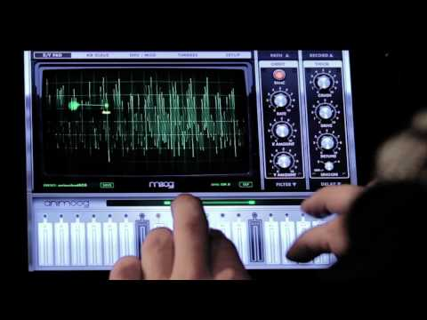 A Tour of Animoog