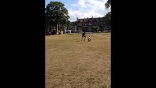 Precious football training