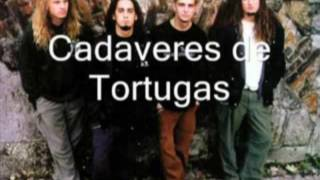 Watch Cadaveres De Tortugas Hate video