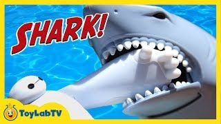 Batman, Spiderman & Baymax Toys Attacked by Shark & Hiro & Elsa are Stranded on Dino Island ToyLabTV