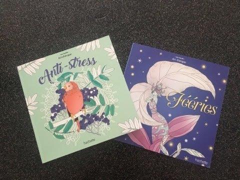 Coloriage Anti Stress Grand Format.Presentation Des Livres De Coloriages Pour Adulte Anti Stress Et