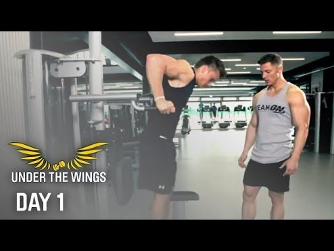 Steve Cook's Under The Wings With Felix Valentino - Chest Workout video